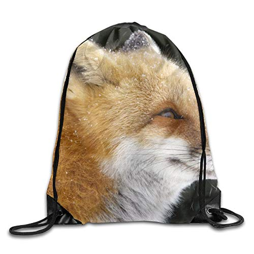 HLKPE Red Fox In The Snow Drawstring Bag for Traveling Or Shopping Casual Daypacks School Bags - Fox Snow Tail
