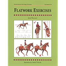 FLATWORK EXERCISES (Threshold Picture Guides)