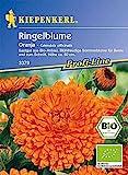 Calendula officinalis Ringelblume Oranja Bio-Saatgut
