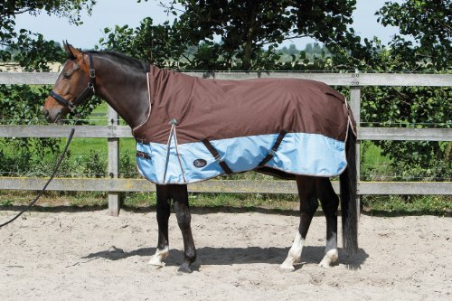 Hamilton Highneck Outdoordecke | Outdoordecke Hamilton Highneck | Pferdedecke | Regendecke, schoko/blau | Stalldecke | Weidedecke