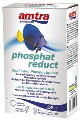 AMTRA Traitement de l'Eau pour Aquariophilie Phosphate Reduct 250 ml