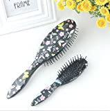 ZXLIFE Peine de Masaje Comb Flower Series Peine de Aire comprimido...