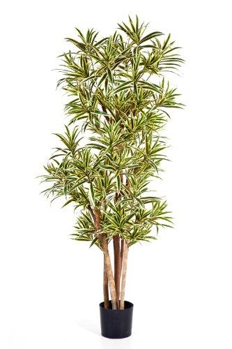 artplants – Deko Dracaena Reflexa Pflanze YASU, 1270 Blätter, grün-gelb, schwer entflammbar, 150 cm – Kunst Zimmerbaum/Künstlicher Drachenbaum