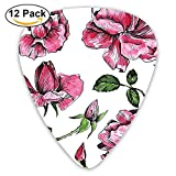 Gartenblumen Rosen Knospen Blätter Handgezeichnete Sketchy Plektren 12 Pack Für E-Gitarre, Akustikgitarre, Mandoline und Bass