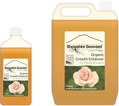 organic-liquid-seaweed-plant-fertiliser-fertilizer-1-litre-other-sizes-available