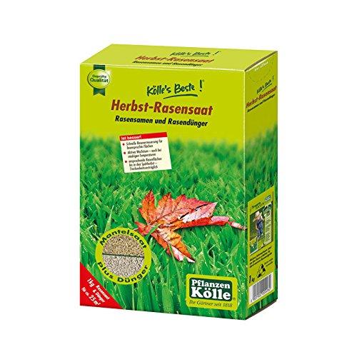 Kölle's Beste Herbst-Rasensaat, Rasensamen und -dünger, 1 kg