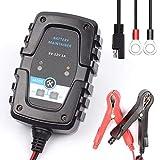CONRAL Mainteneur Automatique Chargeur Batterie de 6V 12V / 1A, avec SAE et Colliers...
