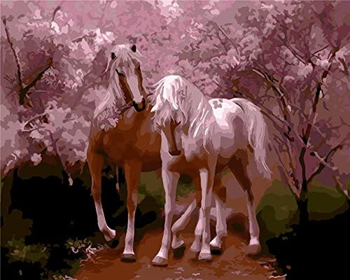 Bricolage numérique toile peinture à l'huile de décoration en nombre 20 Kits 16  20 nombre pouces-E897 cc8b7c