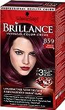 Brillance Intensiv-Color-Creme 859 Violette Wildseide, 3er Pack (3 x 143 ml)
