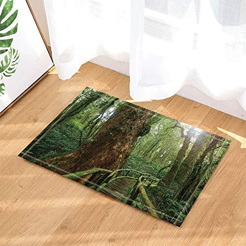 Bambus-brücke (SRJ2018 Eine kleine Brücke aus Bambus und Rattan in Einem pflanzengefüllten Holz Super Absorbent, Anti-Rutsch-Matte oder Fußmatte, weich und komfortabel)