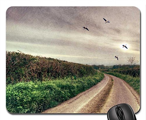 Flying Black Duck (geese flying over country road hdr Mouse Pad, Mousepad (Ducks Mouse Pad))
