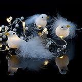 LED Batterie Lichterkette Bird mit Vögel und Perlen 10 Lichter warm weiß Indoor