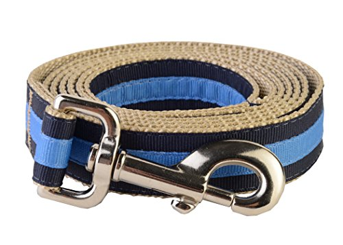 paw-paws-usa-prep-school-wrigley-dog-leash-x-small-multicolored