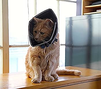 "All Four Paws ""The Comfy Cone"" Halskrause Für Haustiere 4"