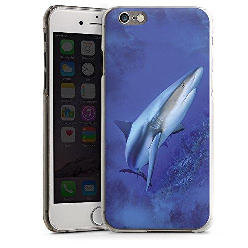 Apple iPhone 5s Housse étui coque protection Prédateur Requin Requin CasDur transparent