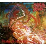 Blessed are the Sick (Digipack CD + Poster) By Morbid Angel (2011-08-01)