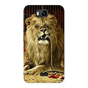 NEO WORLD Remarkable Lion Multicolor Back Case Cover for Honor Bee