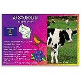 Wisconsin State Fakten-Postkarten-Set von 20identische Postkarten. Post Karten mit Wi-Fakten und State Symbole. Hergestellt in den USA.