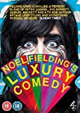 Noel Fielding's Luxury Comedy - Series 1 [DVD]