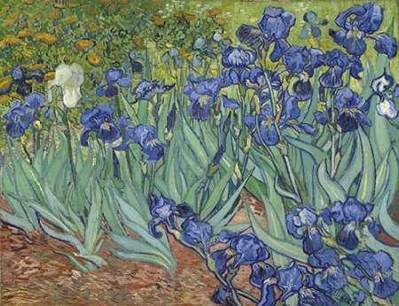 Feelingathome- imprimer-sur-toile-100%coton-Irises,-1889-cm50x67-affiche-reproduction-gravure-
