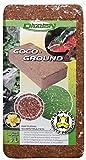 Dragon Coco-Ground - Terrarien Kokosfaser-Brikett ca. 7 Liter