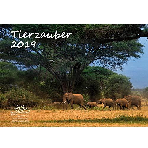 Animales mágica · DIN A3· Premium Calendario 2019· Animales · Wildnis ·...