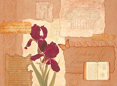 Artland Qualitätsbilder I Kunstdruck Wandbild Gemälde Bild Kunst - Größe 75 x 55 cm - Studie II Blumen Iris Collage A3PD -