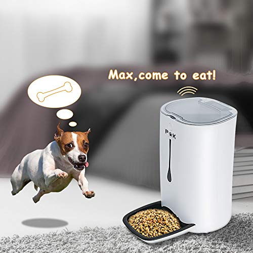 Zoom IMG-1 puppy kitty 6 5l alimentatore