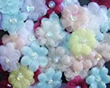 Sparkles Gems UK Organza Ribbon Flowers With Pearl Embellishments x 10 - Assorted Colours