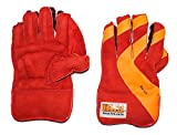#9: HRS Practice Wicket Keeping Gloves (Boys, Multicolor)