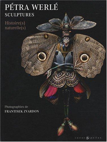 Sculptures : Histoire(s) naturelle(s)