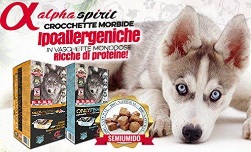 Alpha Spirit - Hill's Canine p/d Razas Grandes - 948 - 0,4 kg