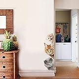 JYSPORT 3D Katzen-Aufkleber Vinyl-Graffiti-Laptop-Gepäck-Fahrrad-Wandbeutel-Wandaufkleber- Toiletten Wandtattoo-Kühlraum-Dekor (Peeping Cat)