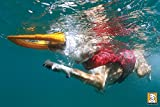 Ruffwear 45101-615M K9 Float Coat Schwimmweste für Hunde, M, rot - 4