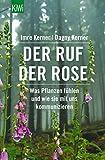 Der Ruf der Rose: Was Pflanzen fühlen und wie sie mit uns kommunizieren