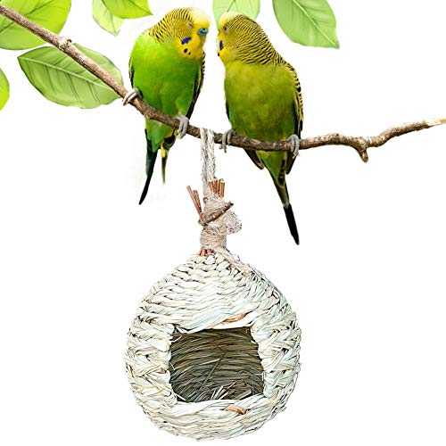 navigatee Caseta para Pájaros De Hierba, Nido De Ave Colgante Redondo Casa De Aves 100 De Fibra Natural Tejida A Mano Que Proporciona Refugio para Pinzón Y Canario