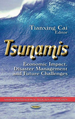 Tsunami images intimes dune catastrophe telecharger