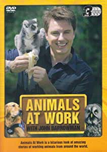 Animals At Work With John Barrowman [3 DVD BOXSET]