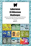 Labernese 20 Milestone Challenges Labernese Memorable Moments.Includes Milestones for Memories, Gifts, Grooming, Socialization & Training Volume 2