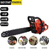 Gas Chainsaws Review and Comparison
