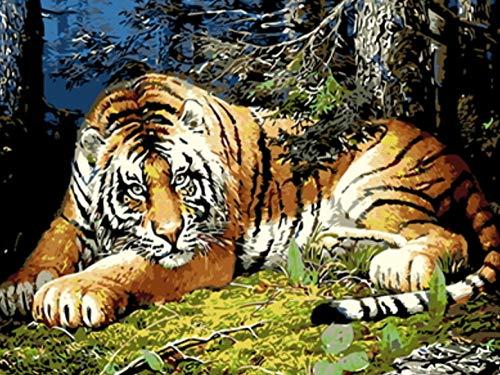 WAFJJ Leinwand-Ölgemälde Geschenk Tiger DIY Vorgedruckt Leinwand Leinwand DIY Ölgemälde für Kinder Erwachsene Anfänger Wandkunst Dekoration 16x20 Zoll(ohne Holzrahmen) 6160 Kit