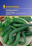 Gurkensamen - Salatgurke Chinese Slangen von Kiepenkerl