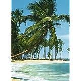 1art1 40524 - Póster autoadhesivo en 4 partes (254 x 183 cm), diseño de playa tropical