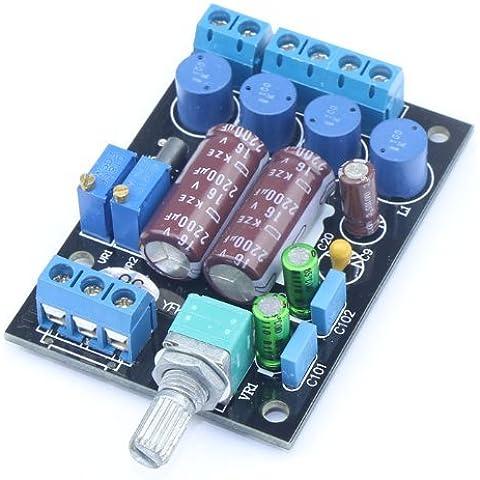 WINGONEER TA2024 amplificador de audio digital Ordenador de a bordo PC HIFI AMP Speaker Módulo de bricolaje 2 canales 3A / 12V fuente de alimentación con 2200uF / 16V eléctrica Large Capacity