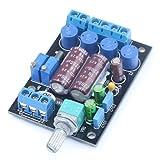 DollaTek TA2024 Amplificatore Audio Digitale Computer di Bordo PC HiFi AMP Speaker Modulo DIY 2 canali Alimentazione 3A / 12V con 2200uF / 16V Elettrico di Grande capacità