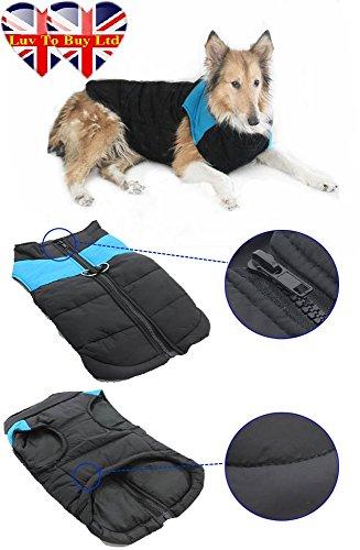 Hundeweste, Hunde Jacke, Hundekleidung, Größe ab: S Um 7 XL, Farbe: Blau & Grün (4 XL, Blau)