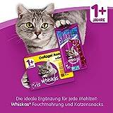 Whiskas 1+ Katzenfutter Huhn, 1er Pack (1 x 3.8 kg) - 7