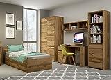 Jugendzimmer Kinderzimmer komplett FOREST Set C Schrank Standregal Kommode Schreibtisch