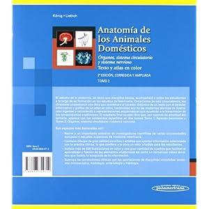 Anatomía de los animales domésticos. Aparato locomotor. Texto y atlas color: Aparato locomotor. Texto y Atlas en color