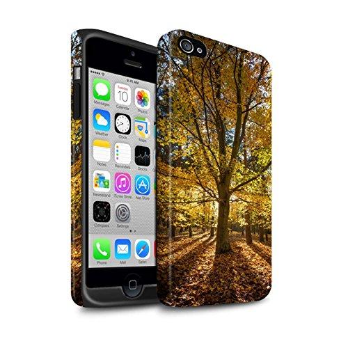 STUFF4 Matte Harten Stoßfest Hülle / Case für Apple iPhone 4/4S / Wald Muster / Herbst Saison Kollektion Wald